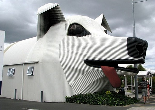 dog_house_new_zealand_lifetimewithdogs